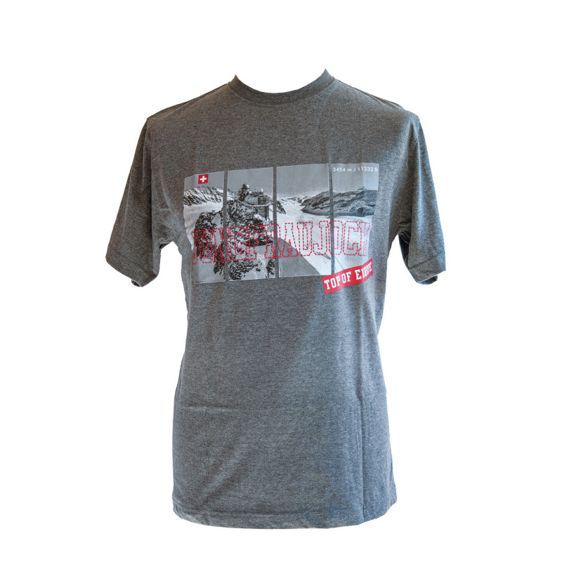 T-Shirt Jungfraujoch Official Collection, men, mottled grey with super Sphinx print