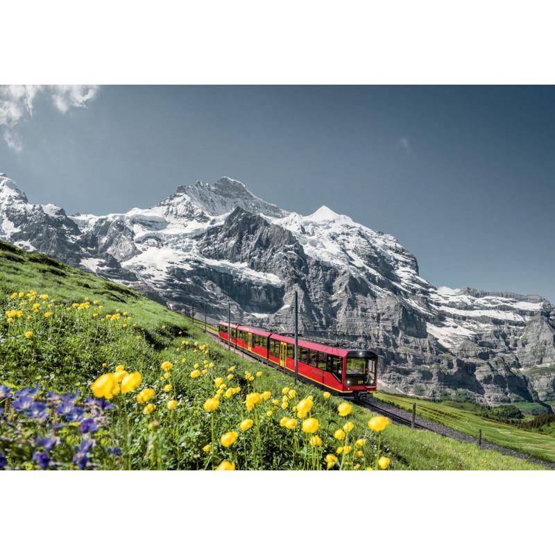 Poster de la Jungfraubahnen - Jungfraubahn avec la Jungfrau en arrière-plan